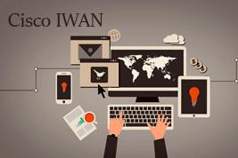 IWAN_0.jpg
